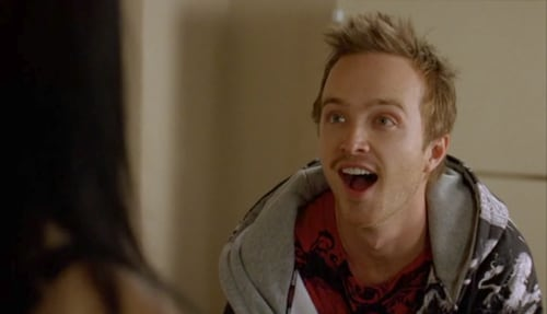 Jesse Pinkman Bitch